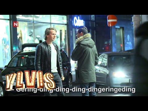 Ylvis selfie battle ends in acapella performence of «The Fox» [Eng subs]   Kjendiskveld   TVNorge