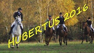 Hubertus 2016 - pogoń za lisem  ♡ Z kopyta ♡