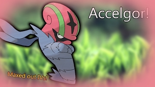 Accelgor Code! | Project: Pokemon | Code | ROBLOX |