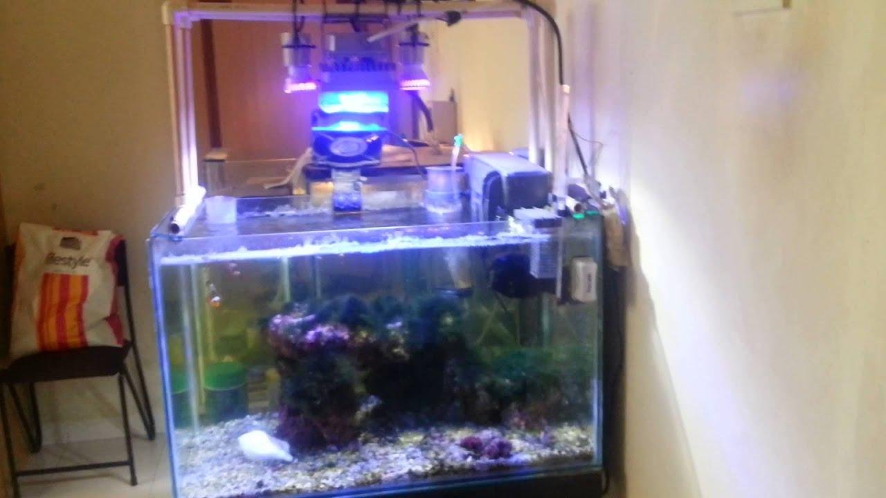 3w uv led with 10w led flood lights