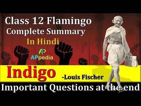 Indigo | CH-5 | 👇👇 Important Questions PDF in description | Class 12th | Flamingo