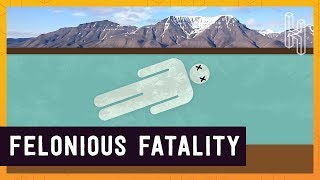 Why Dying is Illegal in Longyearbyen, Norway