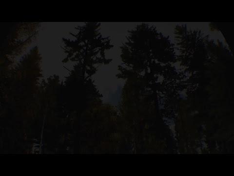 SpeedyMcBangFast's Live PS4 Broadcast
