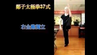 法鼓山中山精舍-太極靜心:鄭子太極拳37式-單鞭,下式,撩,勾手,左右金雞獨立