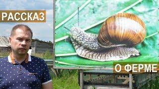 Фермер Сергей Балаев. Рассказ о козьей ферме, о ферме улиток. Экскурсии на ферму