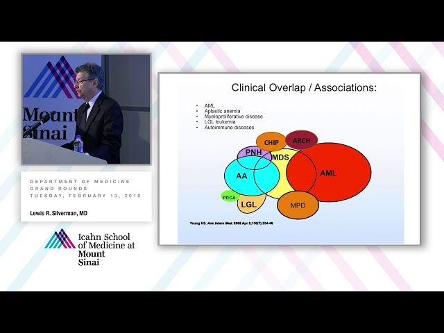 The Myelodysplastic Syndrome - Past is Prologue: Insight to Personalized Therapy