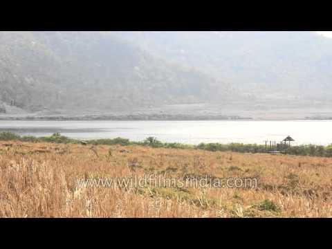 Rih Dil Lake, Largest Lake In Mizoram