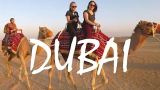 Dubai Desert Adventure: Camel Riding, Belly Dancing, Local Food & More