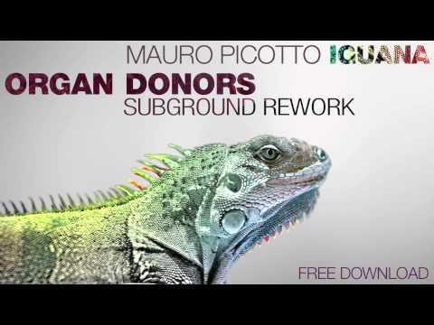 Mauro Picotto - Iguana (Organ Donors Subground Rework)