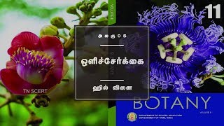 Botany Video Lesson - Chapter 13 HILL'S REACTION