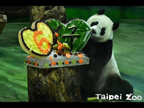 Taipei Zoo By Number | Taiwan By Number, July 11, 2019 | Taiwan Insider On RTI