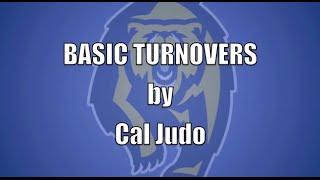 Basic Turnovers