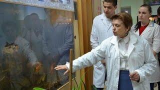 Рыбоводство и аквакультура. Коллекция разных видов рыб  УрГАУ