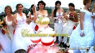 Сбежавшие невесты Славянск-на-Кубани Видео Дмитрий Пухальский