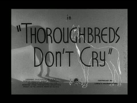 Thoroughbreds Don't Cry is listed (or ranked) 39 on the list The Best Mickey Rooney Movies