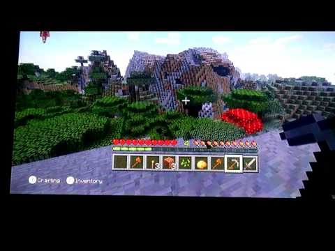 Minecraft Survival EP.1 (DIAMOND FIND) W/ Stampcatfan07 and Angelyn123