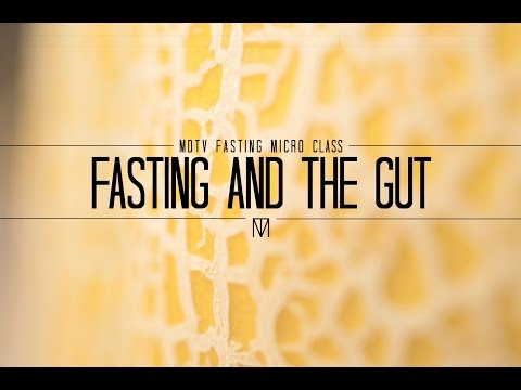 FASTING AND GUT HEALTH: The Good Guy Bad Guy Analogy