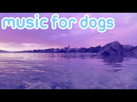 8 Hours of Music to Relax and Calm Your Dog! NEW 2018!