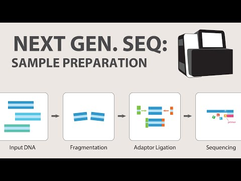 2) Next Generation Sequencing (NGS) - Sample Preparation