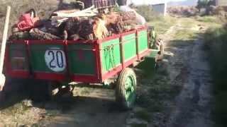 Cargando leña con el motocultor Agria 1900 D, Lombar