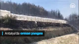 Antalya orman yangını | antalya haber | orman | son dakika 2018
