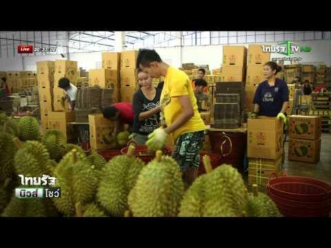 จันทบุรี จีนรุกตลาดผลไม้ไทย   22-06-58   ไทยรัฐ นิวส์โชว์   ThairathTV