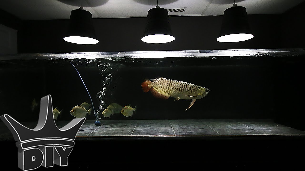 How To Hang A Aquarium Light Fixture From The Ceiling