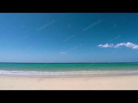 Beach  Free HD Footage & 4K Videos