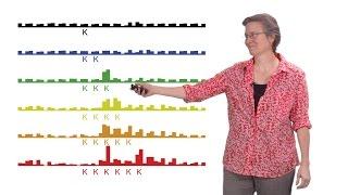 rachel green johns hopkins u hhmi 2 protein synthesis mrna surveillance by the ribosome
