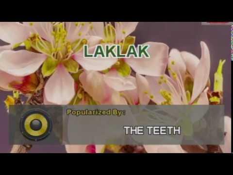 TEETH - LAKLAK (#122) VIDEOKE KARAOKE Platinum Piano Sd-40