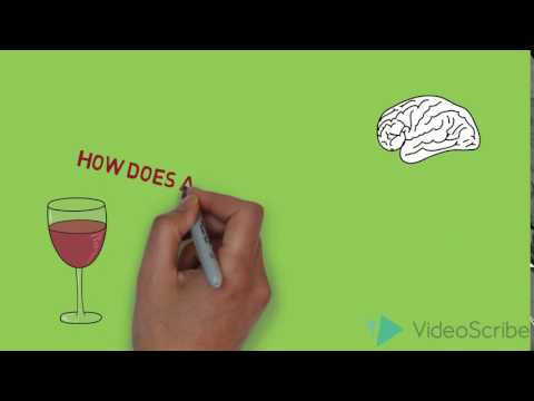How does alcohol affect memory??