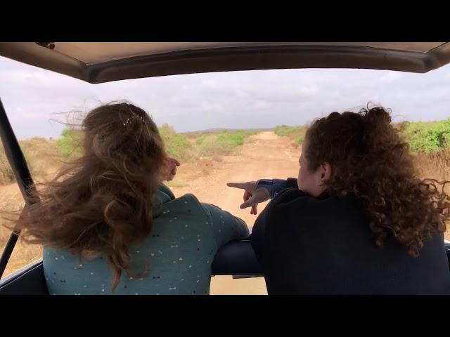 Tanzania & Kenia Wildlife Trailer 21-daagse Backpack Groepsreis