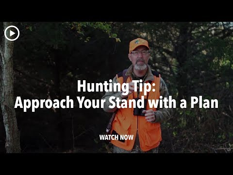 Tree Stand And Hunting Blind Prep: Pre-plan Your Approach - Deer Hunting Tip