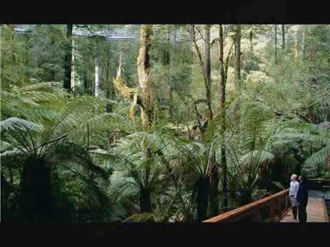 - ADELAIDE - SOUTH - AUSTRALIA -