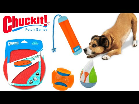 Chuckit! Amphibious Duck Diver, Bumper, Water Skimmer & Hydro Squeeze Water Toys from Petmate