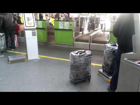 Регистрация на рейс и сдача багажа в Борисполе