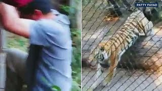 Man jumps fence at Oakland Zoo tiger exhibit   ABC7
