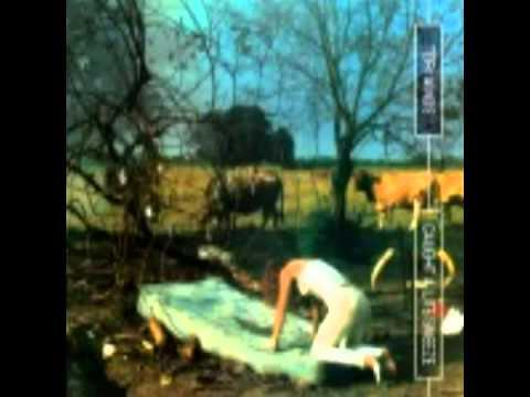 TORI AMOS - Toodles Mr. Jim [1996 mp3]