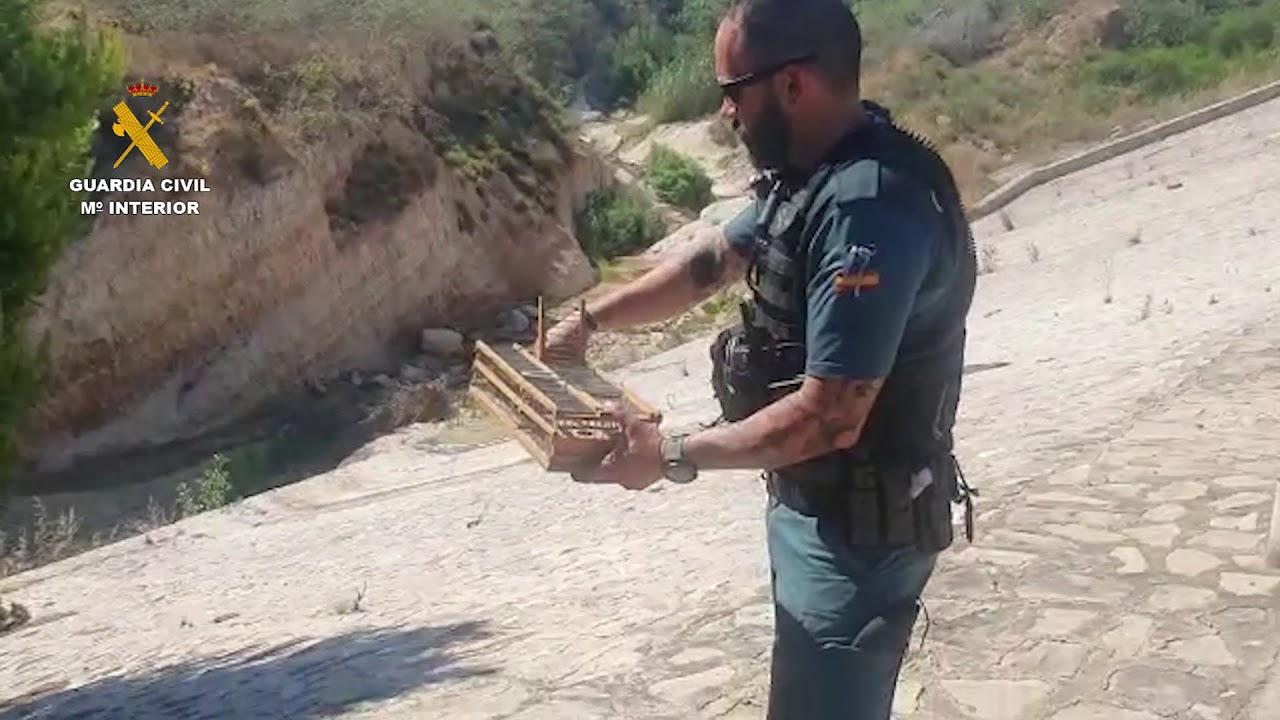 Rescate jilgueros Guardia Civil Torrevieja