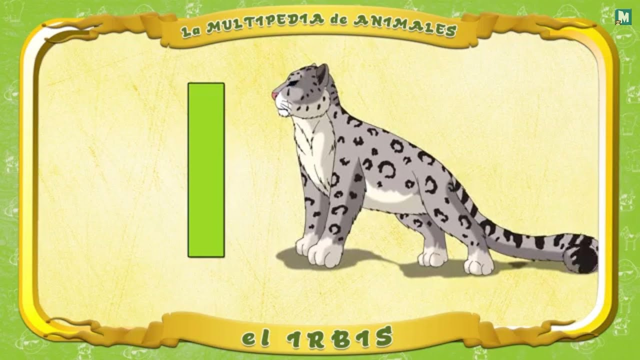 Multipedia de los animales - Letra I - el Irbis - YouTube