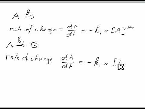 determination of rate law essay Rate and activation energy of the iodination of acetone  determination of the rate law constant requires the rate of the reaction to be explored as the initial.