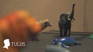 TULUS - Diorama (Studio Live) MP3