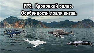 Русская рыбалка 3. Прокачка на Кроноцком заливе. Особенности ловли китов.
