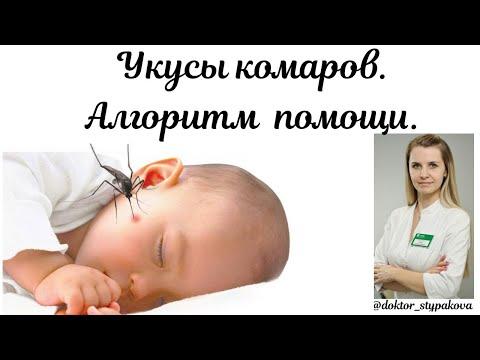 Укусы комаров. Средства от зуда и отеки для детей.Алгоритм помощи при укусах комаров.