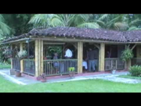 Casa Del Bambu Modena ~ Idee Creative su Design Per La Casa e Interni
