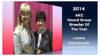 History Of Lucene Dachshunds