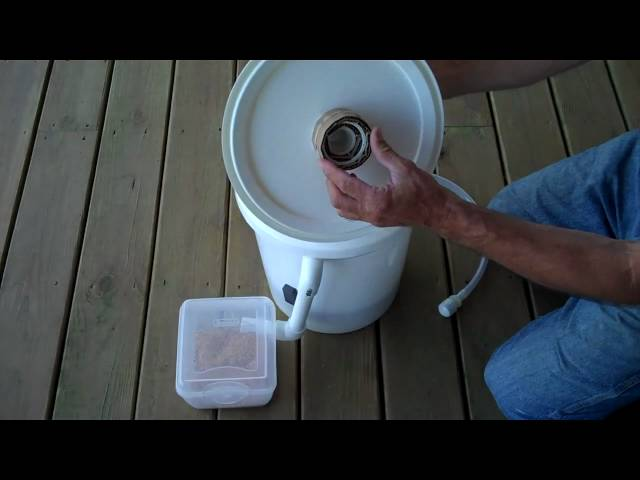 How To Build A Diy Black Soldier Fly Grub Composter Video Treehugger
