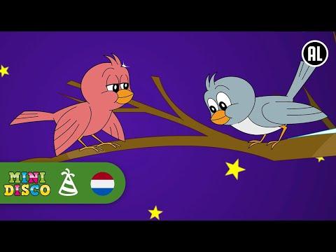 Midden In De Winternacht - Minidisco KERST