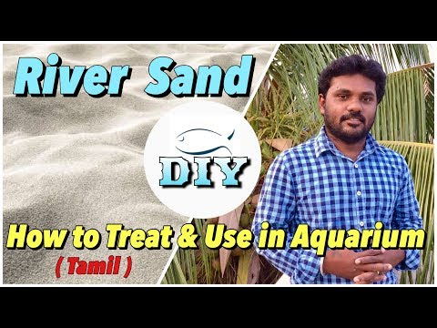 How to Treat & Use the River Sand in Aquarium (Tamil)