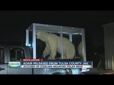 EXCLUSIVE: Man accused of polar bear theft talks